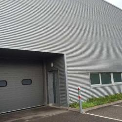 Location Local d'activités Colmar 415 m²