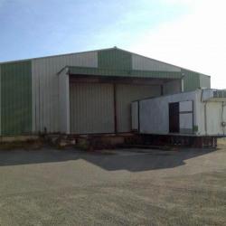 Location Entrepôt Saint-Alban 830 m²