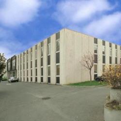 Location Local d'activités Argenteuil 3264 m²