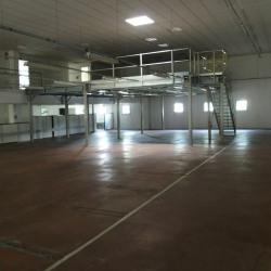 Vente Local d'activités Feyzin 1540 m²