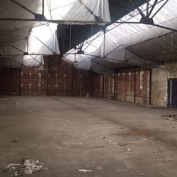 Location Entrepôt Maisons-Alfort 0 m²