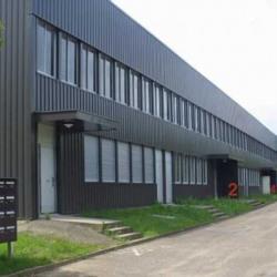 Location Entrepôt Coignières 496 m²