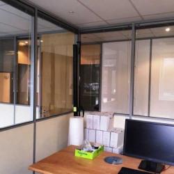Location Bureau Limonest 180 m²