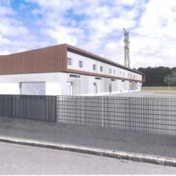 Vente Local d'activités Melesse 200 m²