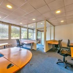 Location Bureau Paris 19ème 697 m²