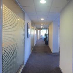 Location Bureau Le Chesnay 410 m²