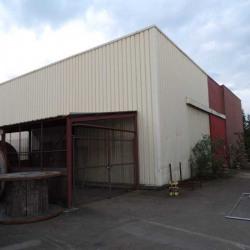 Vente Entrepôt Aubergenville 500 m²