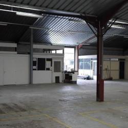 Location Entrepôt Anse 750 m²