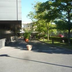 Vente Local d'activités Lognes 4496 m²