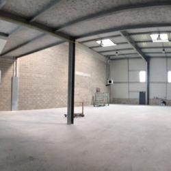 Vente Local d'activités Ferrières-en-Brie 497 m²