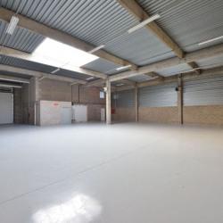 Location Local d'activités Saint-Thibault-des-Vignes 649 m²