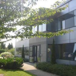 Location Bureau Schiltigheim 38 m²