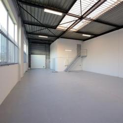 Location Local d'activités Saint-Ouen-l'Aumône 323 m²