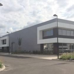 Location Local d'activités / Entrepôt Marcq-en-Barœul