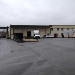 Location Local d'activités Saulx-les-Chartreux 1679 m²