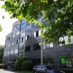 Location Bureau Maisons-Alfort 502 m²