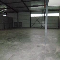 Location Local d'activités Pinsaguel 405 m²