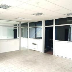 Location Local d'activités Toulouse 530 m²