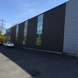 Vente Local d'activités Villemomble 1400 m²