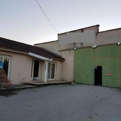 Location Local d'activités Tignieu-Jameyzieu 570 m²