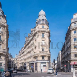 Location Local commercial Paris 17ème 188,99 m²