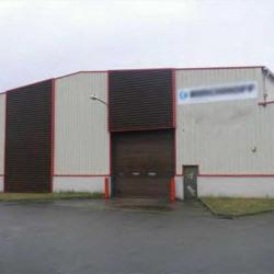 Vente Local d'activités Ymeray 9790 m²
