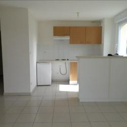 Appartement récent T3