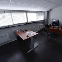 Vente Local d'activités Sainte-Foy-d'Aigrefeuille 350 m²