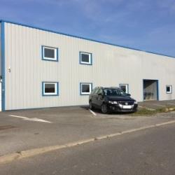 Location Local d'activités Montgermont 425 m²