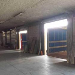 Vente Entrepôt Bussy-Saint-Martin 3950 m²