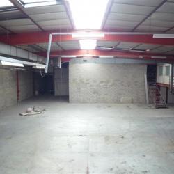Location Local d'activités Fresnes 1100 m²