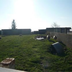 Vente Terrain Rieux (56350)
