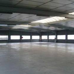 Location Entrepôt Ivry-sur-Seine 933 m²