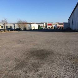 Location Local d'activités Villeneuve-Saint-Germain 1385 m²