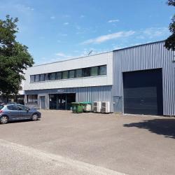 Location Local d'activités Bordeaux (33300)