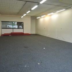 Location Local d'activités Roissy-en-Brie 240 m²