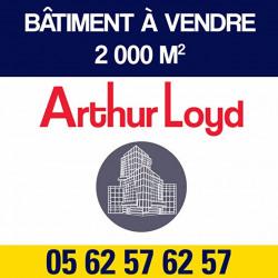 Vente Local d'activités Toulouse (31400)