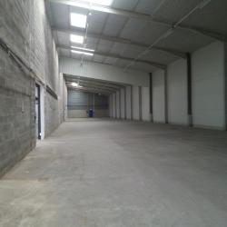 Location Local d'activités Reyrieux 2000 m²