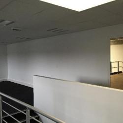 Location Local d'activités Moissy-Cramayel 225 m²
