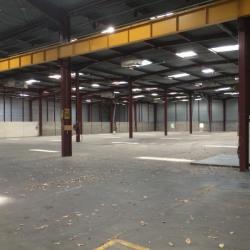 Vente Entrepôt Orléans 7960 m²