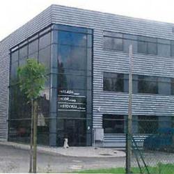 Location Bureau Souffelweyersheim 130 m²
