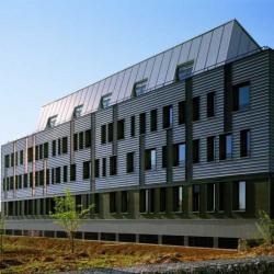 Vente Bureau Meyzieu 2279,4 m²