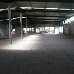 Location Local d'activités Pessac 1080 m²