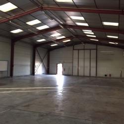 Location Local d'activités Brion 450 m²