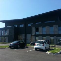 Location Local d'activités Ferrières-en-Brie 1550 m²