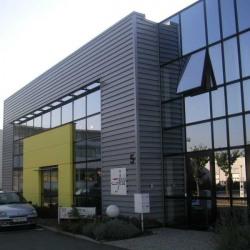 Vente Local d'activités Ostwald 600 m²