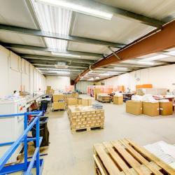 Location Entrepôt Ferrières-en-Brie 1900 m²