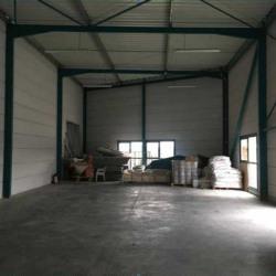 Location Local d'activités Vendargues 298 m²