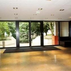 Location Bureau Lognes 167 m²
