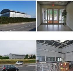 Vente Local d'activités Villefontaine 1228 m²